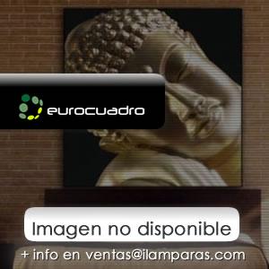 Cuadro of the coleccion NEUM 100x100 cm