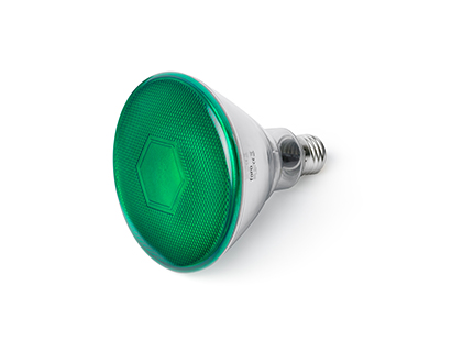 Bombilla Par38 E27 led 10w Green 4000k