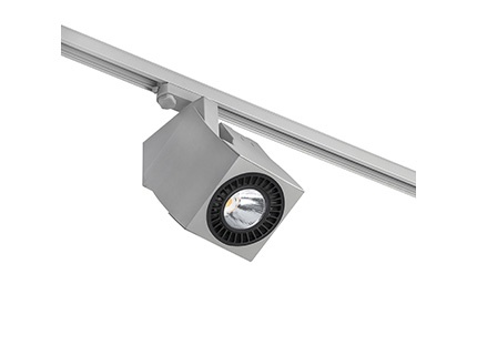 Fokus projector of Track QR-111 LED 2x6w 25º light Fría Grey