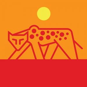 Baby zoo cheetah night