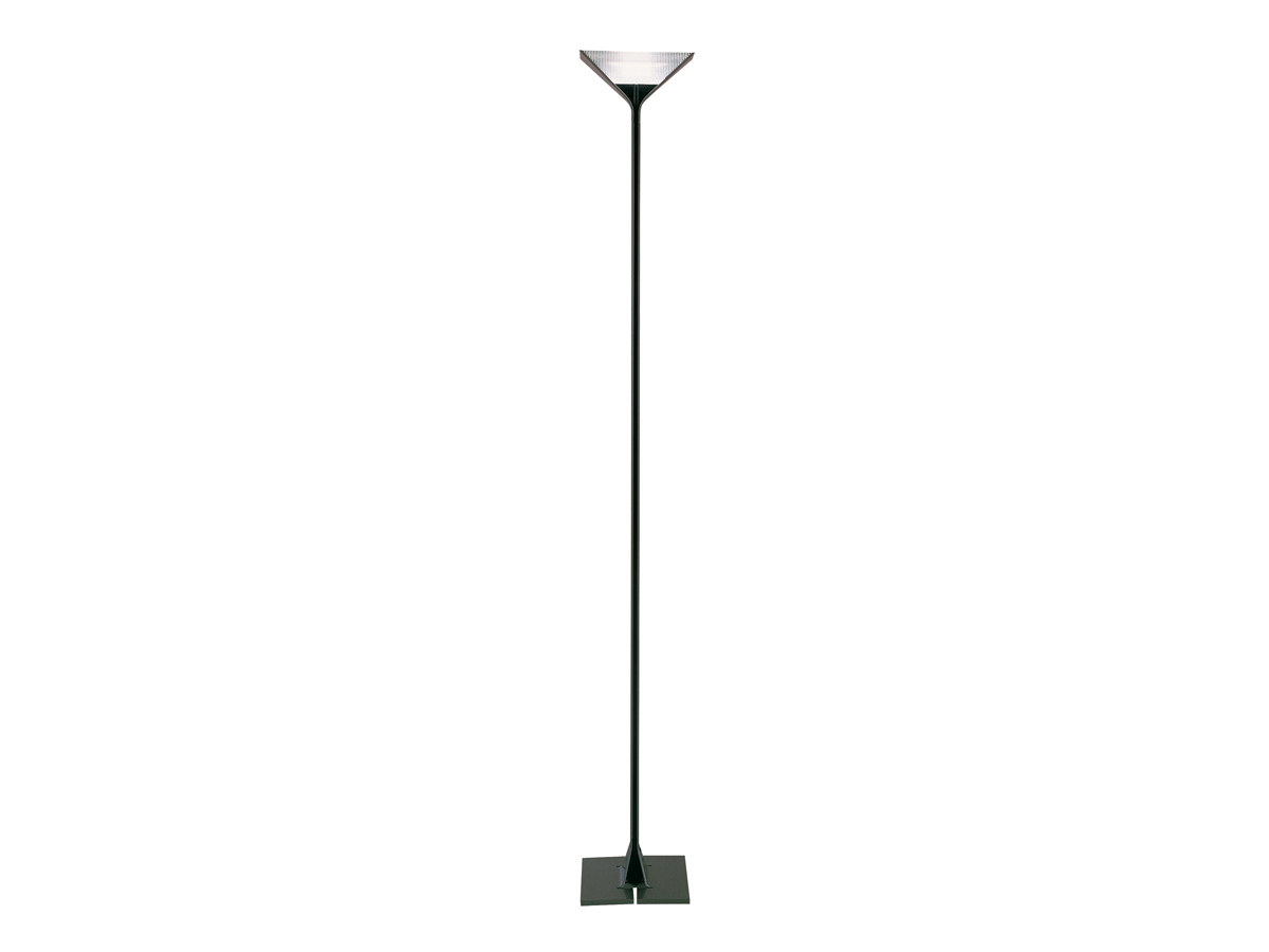 Papillona lámpara of Floor Lamp R7s dimmable Black Black