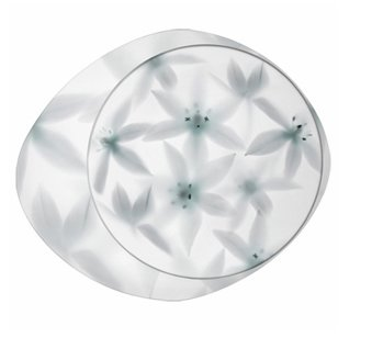 Wagashi ceiling lamp pequeño Fluorescent white