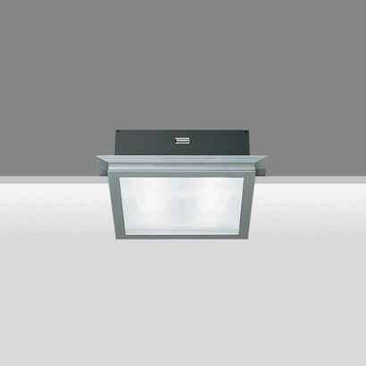 Light Shed Modelo 4 bodies óptica simétrica 4x50W QT 12