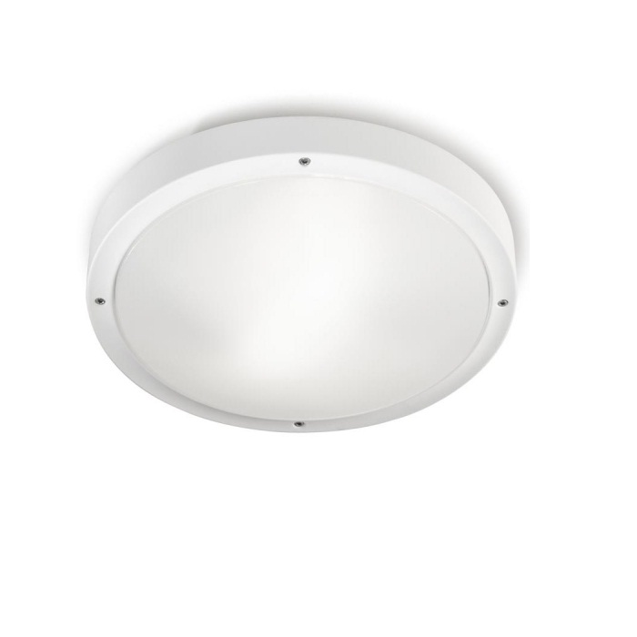 opal ceiling lamp Outdoor 30cm E27 2x23w white