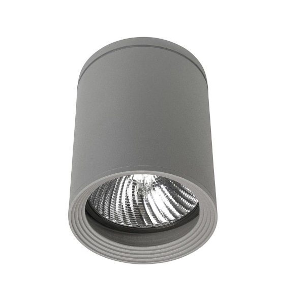 Cosmos ceiling lamp E27 Small Grey 1xE27/PAR-30 MAX 75W
