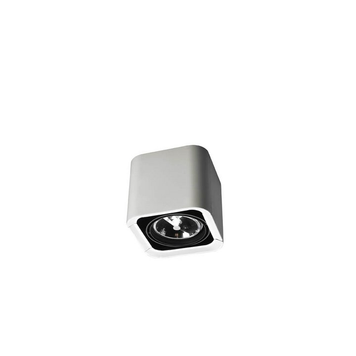 Baco luminare di Superficie Individuale QR 111 G53 75W bianco