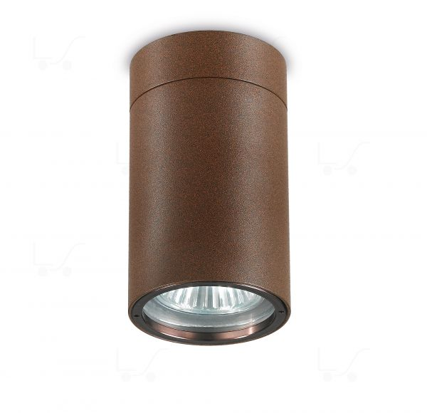 Vision 2 ceiling lamp Outdoor QPAR16 35W steel cor ten