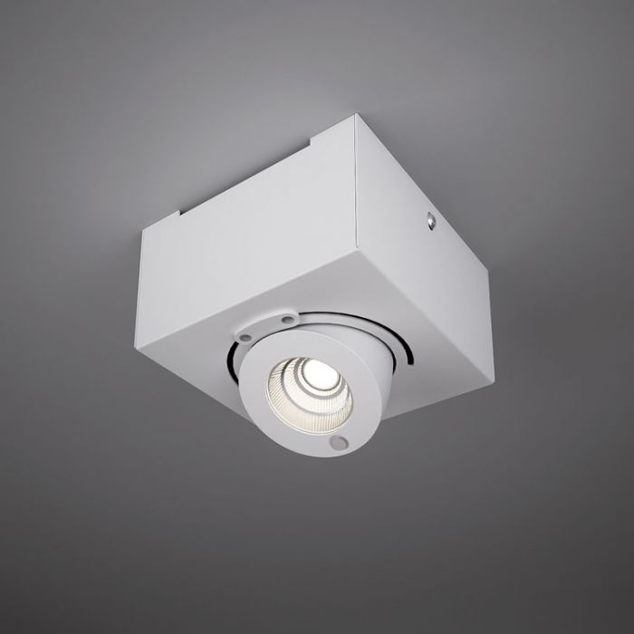 Bridge ceiling lamp Single LED 10w driver incluido 13cm white