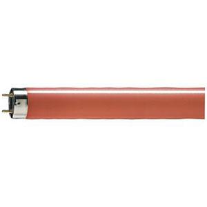 Tubo Fluorescent Master TL5 HE ColoRojo 14W Rouge