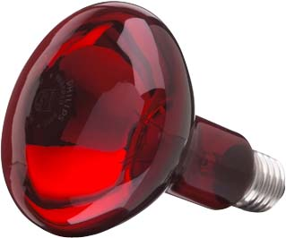 Practitone Infrared R95 100W E27 230V