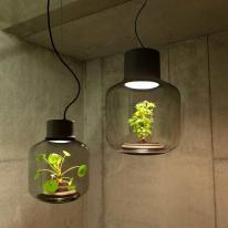 Mygdal Plantlamp, tierra fértil para lámparas led