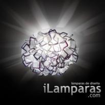 SLAMP Clizia