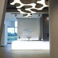 Ameba de Vibia ilumina la Esker Foundation Art Gallery