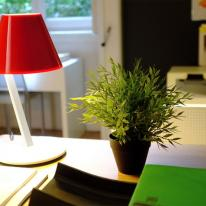 La Petite de Artemide, inclinación simple y elegante