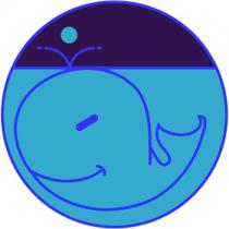 Baby zoo whale