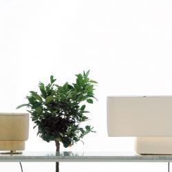 Paso Doble S Sobremesa E27 1x42w 230v pantalla blanca y Base Cromo negro