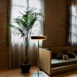 Bosca lámpara of Floor Lamp Roble