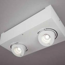 Bridge ceiling lamp Doble LED 2x10w driver incluido 30cm white