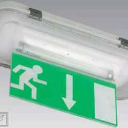 Dunna Rtulo exit emergency Banderola