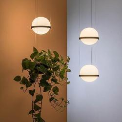 Palma Lámpara Colgante 6 × Led- Lacado grafito mate