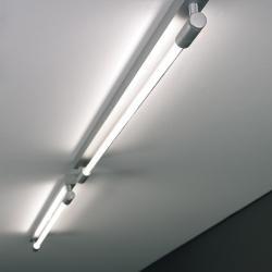 Roof C/W I 70 Applique/plafonnier G5 1x24w Aluminium Satin