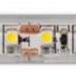 Strip 48W 12VDC 5m 3000K IP68 silicon