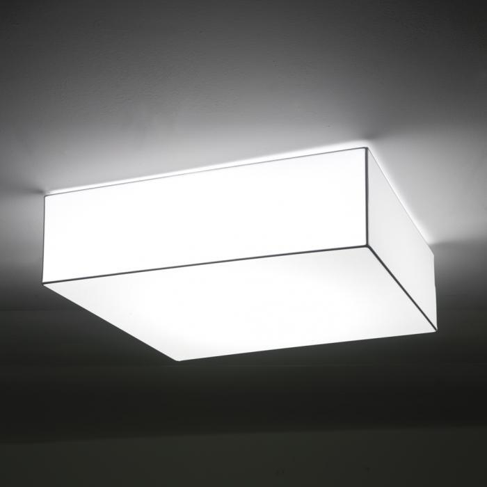 Imagen 1 de Block ceiling lamp DIMABLE 1-10V 2X24W 20010